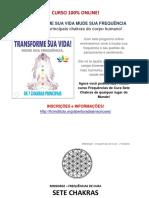 MUDE SUA FREQUÊNCIA - SETE CHAKRAS.pdf
