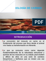MICROBIOLOGIA DE CARNES