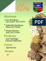 segundo informe-Agrotecnia