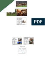 ANSC 1410_Horse Industry.pdf