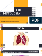 HISTOLOGÍA-FABIOLA SARAVIA.pdf