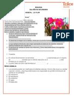2°TAREAII LA FLOR Y REINO ANIMAL-07-10-2020