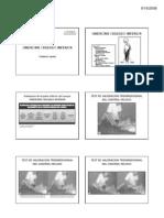 C9_Evaluación_del_Sindrome_Cruzado_Inferior_PDF_[Modo_de_compatibilidad]