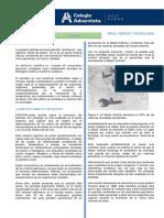 3° Secundaria Petroleo GT.pdf
