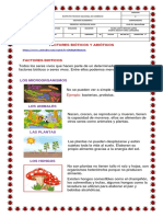 factoresbi1596718853 (1)