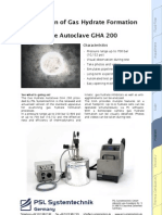 Gas Hydrate Autoclave Datasheet 081208