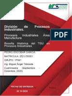 Reseña Histórica del TSU en Procesos Industriales.docx