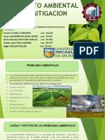 Trabajo 003 Grupo Nº 06 Problemas Ambientales, Medidas de Corrección y Reducción de Los Principales Impactos Negativos