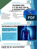 Exposición._Práctica_N°_6._Glutatión_y_su_rol_oxidativo.pptx