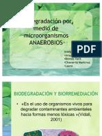 Biodegradacin por medio de microorganismos ANAEROBIOS