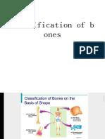 Classification-WPS Office