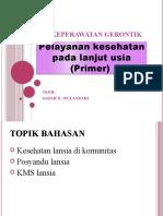 4.SARAH-GERONTIK HC PRIMER.pptx