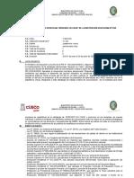 1.-MODELO-DE-PLAN-DE-TRABAJO-REMOTO