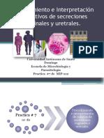 Practica # 7 secrecion vaginal y uretral.pdf