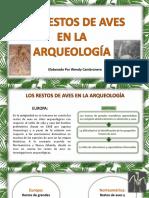 exposición_restos de aves en la arqueología -PDF