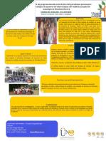 Gina Castillo- Poster Proyecto 2020.pptx