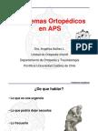 PROBLEMAS ORTOPEDICOS EN APS