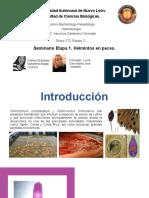 Seminario Eq. 2.Clinostomum complanatum y Centrocestus formosanus