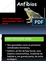 anfibios ppt1 gaby