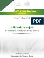 GUIA CTE FASE INTENSIVA  SECUNDARIA 35.pdf
