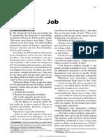 Spanish_Bible_18__Job