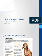 Gina y los problemas de sociabilizacion canina