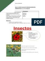 plan de trabajo contingencia corona virus 10  al  14  Agosto