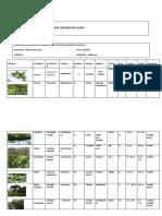 lista de chequeo ambiental