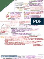 Mapas Mentais - Teorias do Crime.pdf