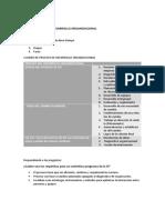 proceso del desarrollo organizacional yesila