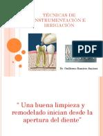 Instrumentación e irrigación endodoncia