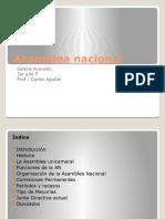 Asamblea Nacional Selena