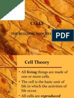 cells-150925002419-lva1-app6892.ppt