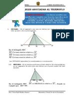 LINEAS NOTABLES ASOCIADAS AL TRIANGULO.pdf