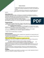 Nuevo_resumen.docx