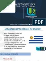 TRABAJO ACCIONES CONST..pptx