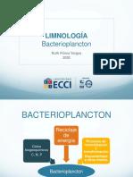8. Bacterioplancton 2020-2 es (1).pdf