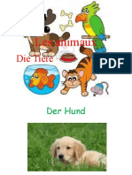 --bildworterbucher_39868