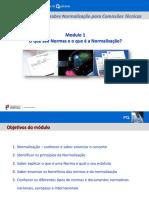 Modulo1_Normalizacao.pdf