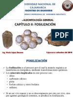 CAP 2 FOSILIZACION.pdf
