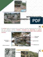 CAP_ 01_INTRODUCCIÓN.pdf