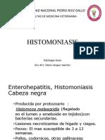 12-HISTOMONIASIS