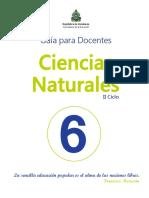 6° Guía del Docente CCNN.pdf