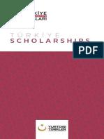 turkish government scholarship