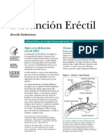 ErectileDysfunction_508.pdf