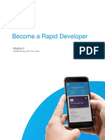 Rapid Developer - Module 2