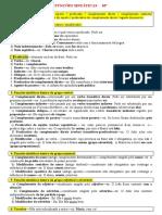 FUNÇÕES SINTÁTICAS - ficha informativa