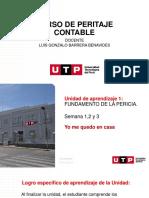 Sesion 3.  DESARROLLO DE UN CASO DE PERITAJE CONTABLE (2)