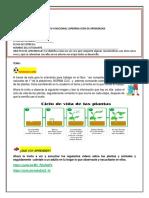 TALLER+DE+RETROALIMENTACIÓN+DE+NATURRALES