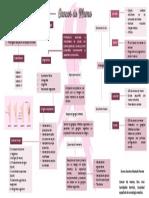 Cancer de mama mapa conceptual